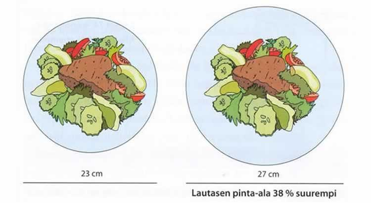 ruokalautasen-koko